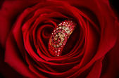 Ring with diamonds in a red Rose — Stock Photo