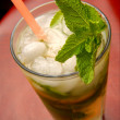 Mahito refreshing cocktail with ice, gin, lemon juice and mint — Stock Photo
