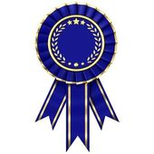 Blue Ribbon Award — 图库照片