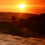 Desert — Stock Photo #5934087