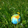 Globe in grass - Stockfoto