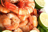 Shrimp background — Stock Photo