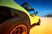 Cochecillo del desierto — Foto de Stock