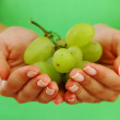 Grape in woman hands — Stock Photo