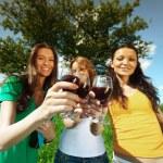 Girlfriends on picnic — Stock Photo #6669045