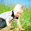 Boy on picnic - Stock Photo