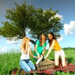 Girlfriends on picnic — Stock Photo #6694007