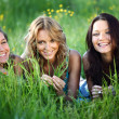 Stock Photo: Women grass fun