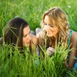 Women grass fun — Stock Photo #6699677