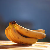 Fresh bananas — Stock Photo