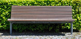 Wooden bench in front of bush — Stock Photo