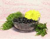 The glass vase with bilberry berries is decorated by a yellow flower and a — Stock Photo