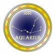 Zodiac sign aquarius - Stock Vector