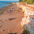 Stock Photo: Darwin coast