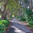 Botanic garden — Stock Photo #6528233
