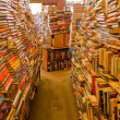 Bookstore — Stock Photo #6654959