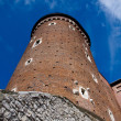 WAWEL CASTLE TOWER. KRAKOW. POLAND — Stock Photo