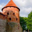 Trakai Island Castle - Stock Photo