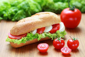 Sandwich with mozarella and tomatoes — Stock Photo