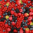 Berry Mix - Stock Photo