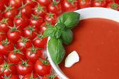 Fresh tomato soup — Zdjęcie stockowe