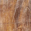 Stock Photo: Wooden walls