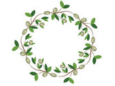 Olive wreath,vector, — Stock Vector
