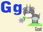 Animal alphabet G ,vector — Stock Vector