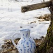 Collecting birch sap to ceramic pither — Stock Photo