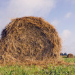 Stock Photo: Rolls of hay