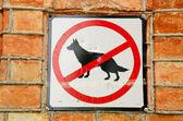 No dogs. — Stock Photo