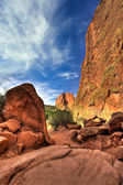 Garden of the Gods — Stock Photo