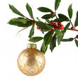 Holly and Gold Ornament — Stock Photo
