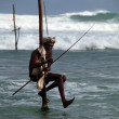 Traditional sri lankan stilt fisherman — Stock Photo