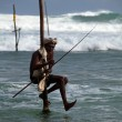 Traditional sri lankan stilt fisherman — Stock Photo #6450013