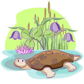 Cheerful Tortoise. — Stock Vector