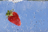 Fresa roja brillante. — Foto de Stock