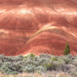 Contrast of the Painted Hills. — Stock Photo