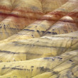 The vast geology of Painted Hills. — Stock Photo