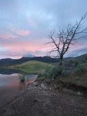 Mañana tranquila junto al lago. — Foto de Stock