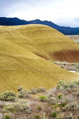 Gul färg av målade hills. — Stockfoto