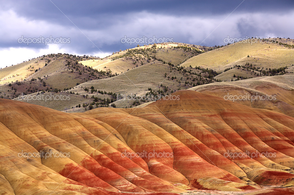 The rich and vibrant colors of the painted hills in north central Oregon.  Stock Photo #5831277