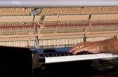 Playing the piano. — Stockfoto