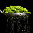 Drained peas — Stock Photo