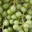 Royalty-Free Stock Photo: Grapes close up