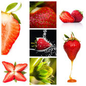 Strawberry montage — Stock Photo