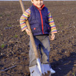 Little boy to dig on field with big shovel — Stock Photo #5478490