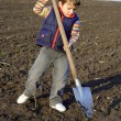 Little boy to dig on field with big shovel — Stock Photo #5565095