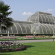 Kew Gardens ( botanic park in London) - Stock Photo