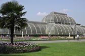 Kew Gardens ( botanic park in London) — Stock Photo
